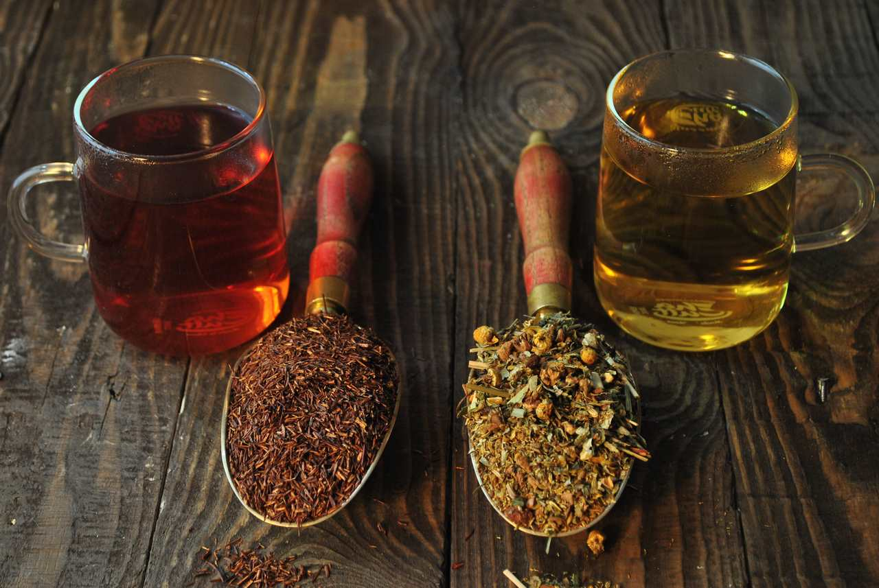 Rooibos e infusiones